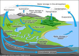 the water cycle science learning hub the water cycle