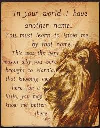 Narnia Quotes Beauteous Narnia ℚuotes Pinterest Narnia CS Lewis And Books