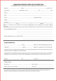 037 Printable Donation Form Template Action Plan For