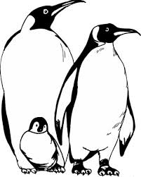 Small Picture Penguin Coloring Pages For Those Have Happy Feet 13836