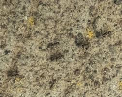 Tiny Black Ants Kitchen Little Black Ants Youtube