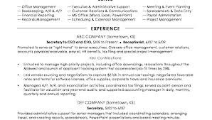 Ms Project Scheduler Sample Resume Enchanting Senior Management Resume Samples Equios
