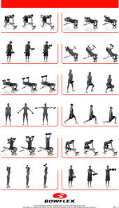 Bowflex Ultimate 2 Exercise Chart Bowflex Xtreme 2 Workout Poster Sport1stfuture Org