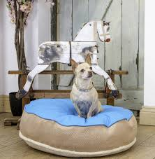 fancy dog beds furniture. Soft And Cool Stylish Dog Beds In Blue Brown Color Fancy Furniture M