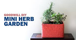 with grilling weather officially here i wanted to put together a mini herb garden so i can freshen up my summer dishes a bit and add a little indoor