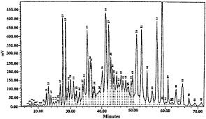 Rp Hplc Of Fish Oil Triacylglycerols Hplc Conditions
