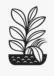 125 best the plant vandal images on pinterest indoor plants Houseplants For Clean Air a3 houseplant risograph print houseplants for cleaner air