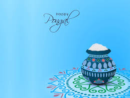happy pongal festival background hd