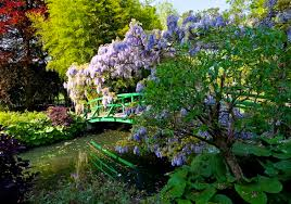 bridge on the anese water lily pond at giverny