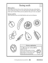 care of elderly essay form 2