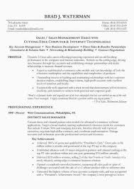 Sales Resume Objective Gorgeous Resume Objective For Sales Luxury 60 General Resume