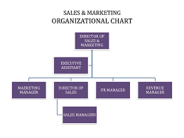 Organizational Chart Of Sales And Marketing Department In A Hotel Hotel Management Marketing Online Presentation