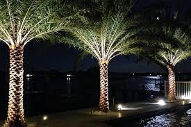 Vision Landscape Lighting Naples Fl Naples Bonita Ft Myers Landscape Lighting By Dan Allen