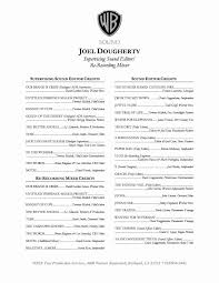 Simple Sample Photo Producer Sample Resume Resume Sample