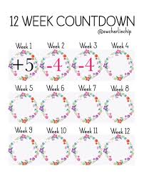 Slimming World Weight Loss Chart Pin On Slimming World