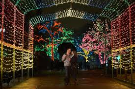 Christmas Light Proposal Engagement Season Is Upon Us Brian Alexis Holiday
