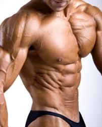 Bästa träningsprogrammet för att bygga muskler