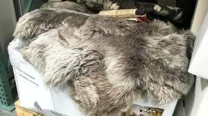 amazing sheepskin rug costco at 9 8035