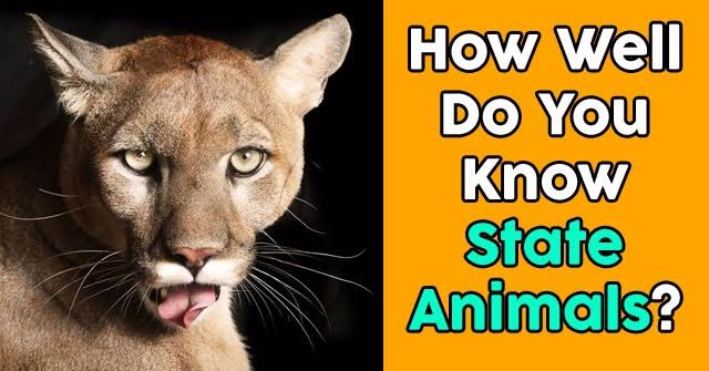 How many animals can you know in english language ? Quiz
