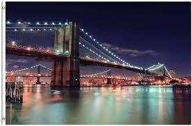 Brooklyn Bridge Lights Amazon Com Shinesnow New York City Brooklyn Bridge