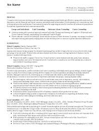 Sample Counselor Resume Best Professional Resumes Letters
