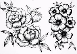цветочные эскизы линером
