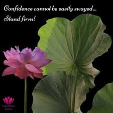 Lotus Bloom Aromas On Twitter Strength Isnt Always Physical It