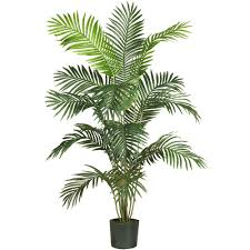 Paradise Palm Silk Tree Nearly Natural 5 ft. 6 in.. Tree-5260 - The Home