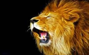 yadav logo wallpaper,lion,roar,masai ...