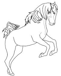 Steigerend Arabisch Paard Kleurplaat Gratis Kleurplaten Printen