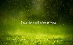 rain status today