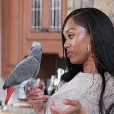 T'Challa's RHOP Behavior, Explained by a Parrot Expert