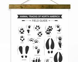Break out your top hats and monocles; Animal Tracks Art Etsy