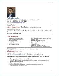 Executive Resume Writing Service New Cutting Edge Industry Specific