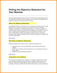 It Objective Statement For Resume Laredo Roses Cyber Security