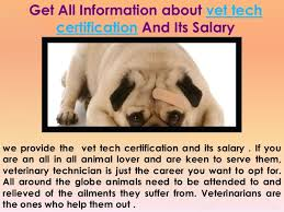 Veterinarian Technician Salary Veterinary Tech Salary