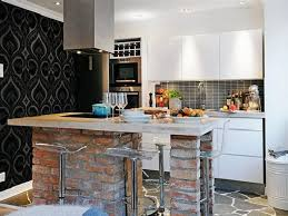Apartment Kitchen: Contemporary Apartment Kitchen at a Small Cost ...