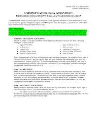 Division Classification Essays