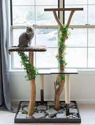 Accessories: Beautiful Cat Tree Made For Actual Trees - Cat Furniture
