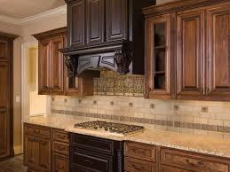 backsplash ideas for kitchen. Wonderful Kitchen Magnificent Design Ideas For Backsplash Kitchens Concept  Extraordinary Kitchen Tile And L