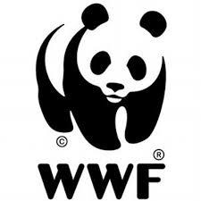 Resultado de imagem para WWF pesca