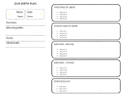 How To Plan Baby Birth Date Baby Birth Plan Template Free Birth Plan Template Babycenter