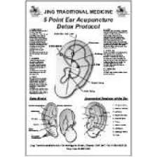 Jing Traditional Medicine 5 Point Detox Ear Chart