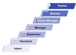 Kpmg Organizational Structure Chart Career Levels Kpmg Belarus