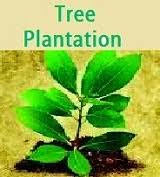 hindi essay agrave curren uml agrave curren iquest agrave curren not agrave curren agrave curren sect short essay on tree plantation in tuesday 14 2014