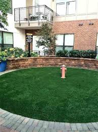 diy dog potty area patio dog potty system unique best pet relief area drainage images on