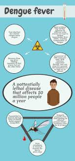 infographic dengue fever outlining your essay infographic infographic dengue fever outlining your essay infographic dengue essay