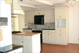 Should I Paint My Kitchen Cabinets White Simple Design Inspiration