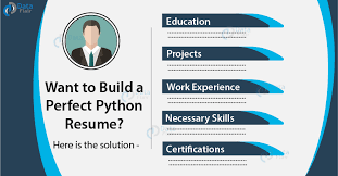Create Perfect Resume How To Create A Perfect Python Resume Let Your Resume