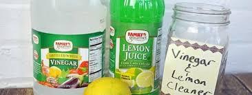 Vinegar and Lemon Cleaner